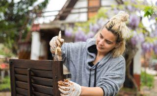 DIY garden searches surge