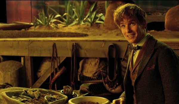 Fantastic Beasts and Where To Find Them Newt
