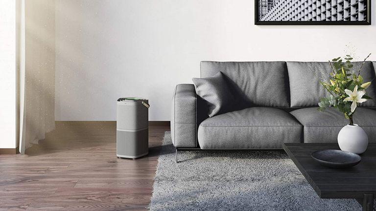 best air purifier: AEG AX9 in living room beside grey sofa