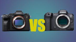 Sony A1 vs Canon EOS R5