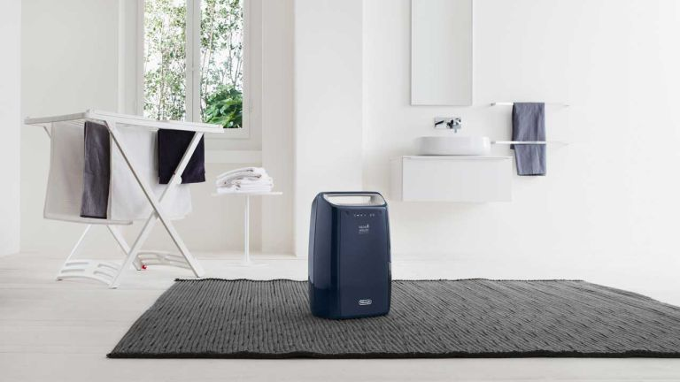 Best dehumidifier for drying clothes: De'Longhi Tasciugo AriaDry DEX16F Dehumidifier
