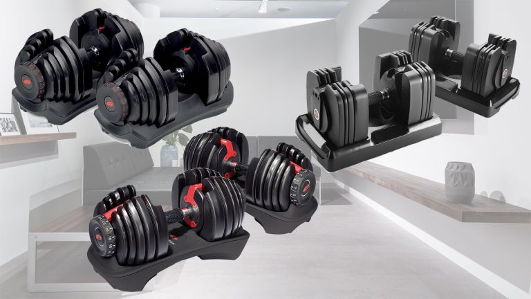 Bowflex Selecttech dumbbells home gym