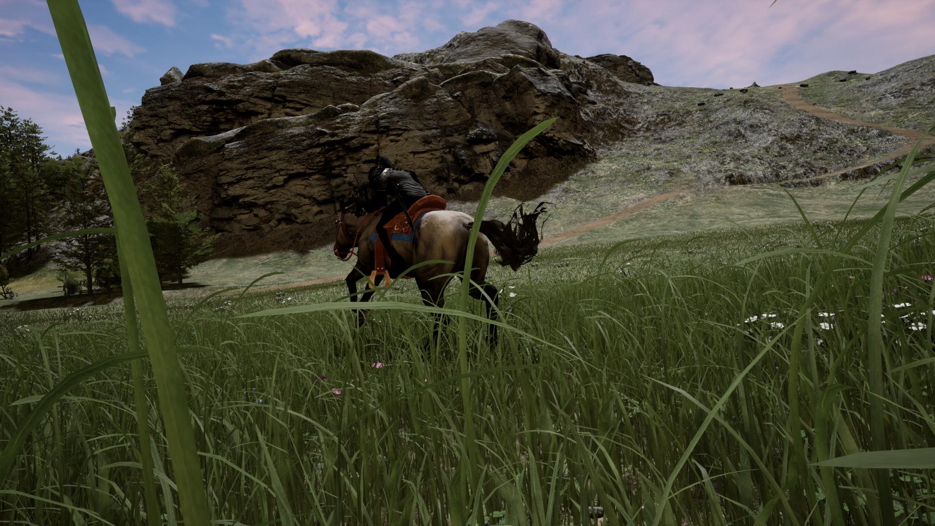Stormrite, a horse running in a field