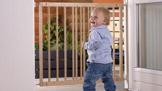 BabyDan baby gate
