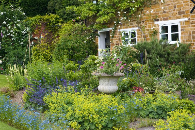 cottage garden ideas: plants in front of pretty cottage
