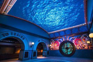 Analog Way Drives Entrance Experience at St. Louis Aquarium
