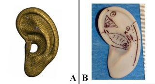 an artificial ear