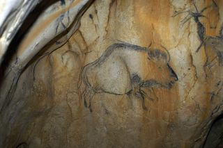 bison hybrid cave paintings