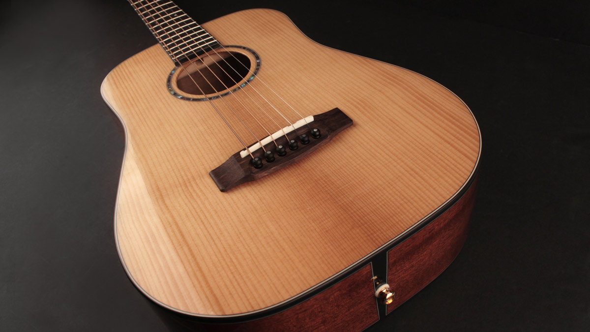 Cort's Gold Mini promises the best of a dreadnought at 3/4 the size