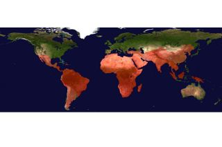 satellites, health outbreaks