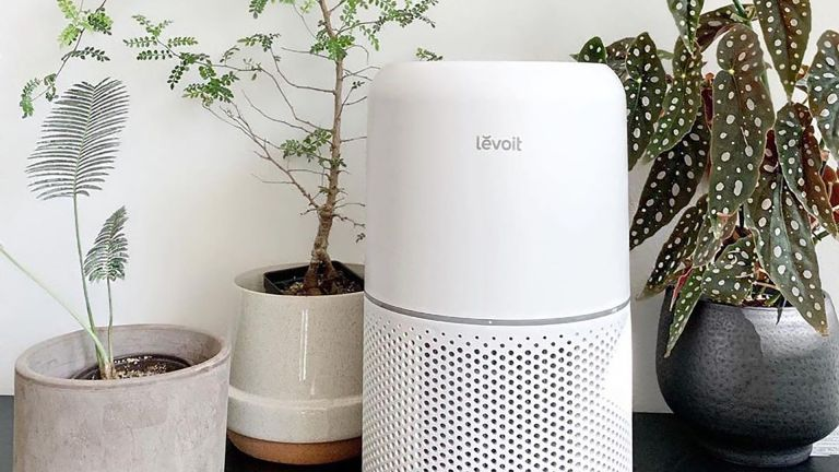 Levoit Core 300 air purifier placed on floor surrounded by plants