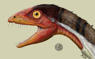 T. rex ancestor