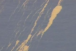 A huge pumice float was spotted off the coast of New Zealand.