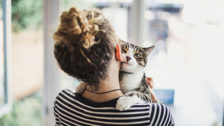 How to make your cat love you