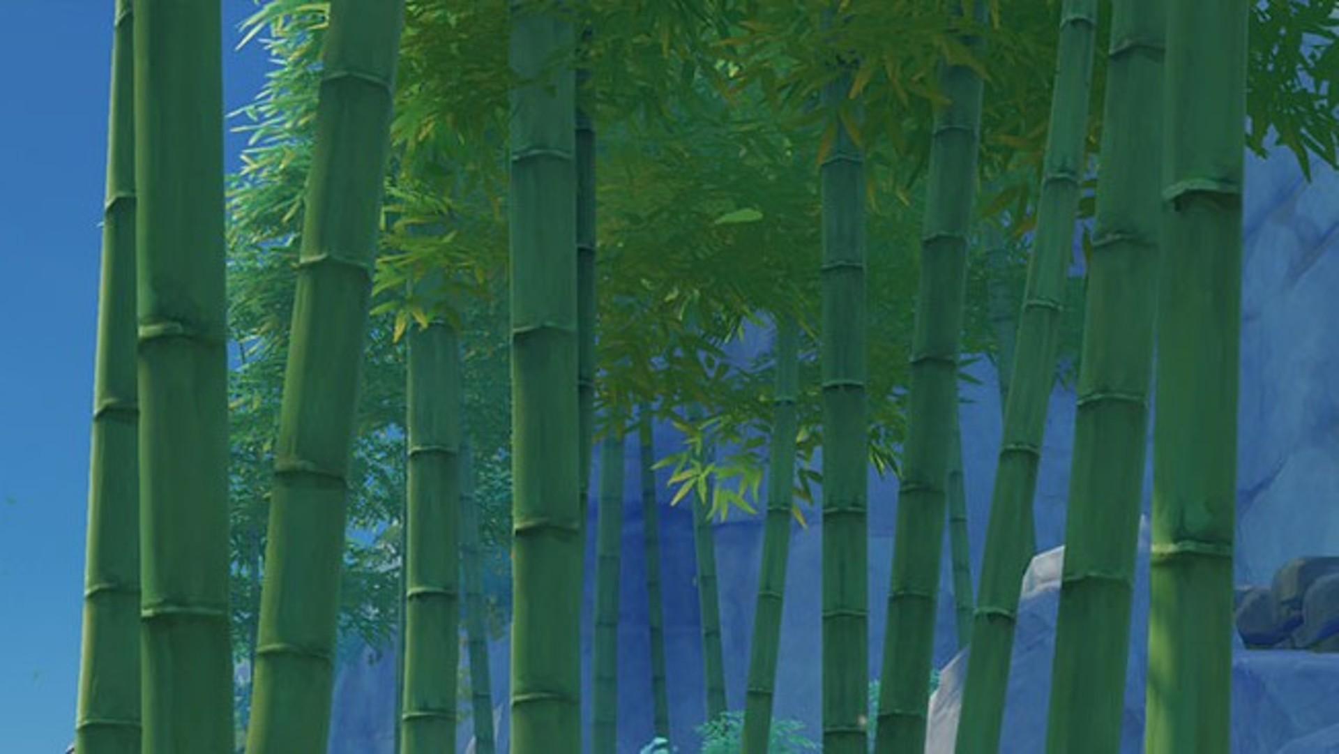 genshin impact bamboo segment locations