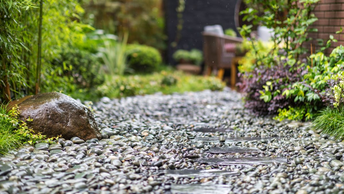 Here's why you need a rain garden this winter