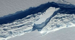 The thinning of ice melanges, an icy glue that fuses ice rifts back together, may play a major role in iceberg calving.