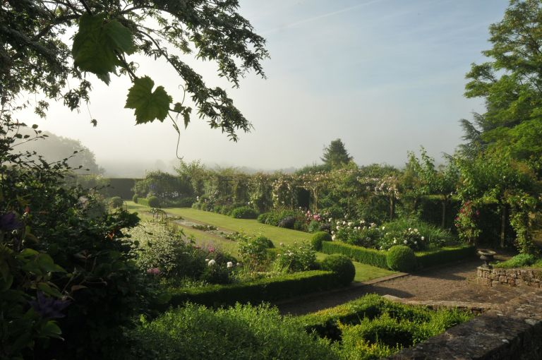 misty garden with hedges and topiary