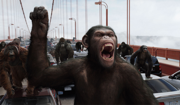 Rise Of The Planet Of The Apes San Francisco