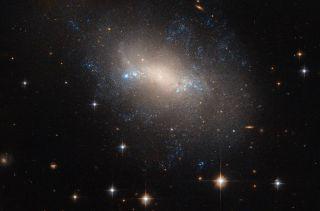 irregular galaxy ngc 2337