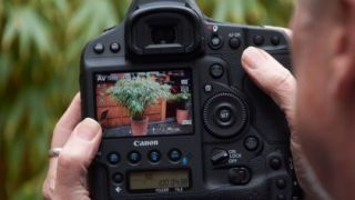 The current EOS 1D X Mark II