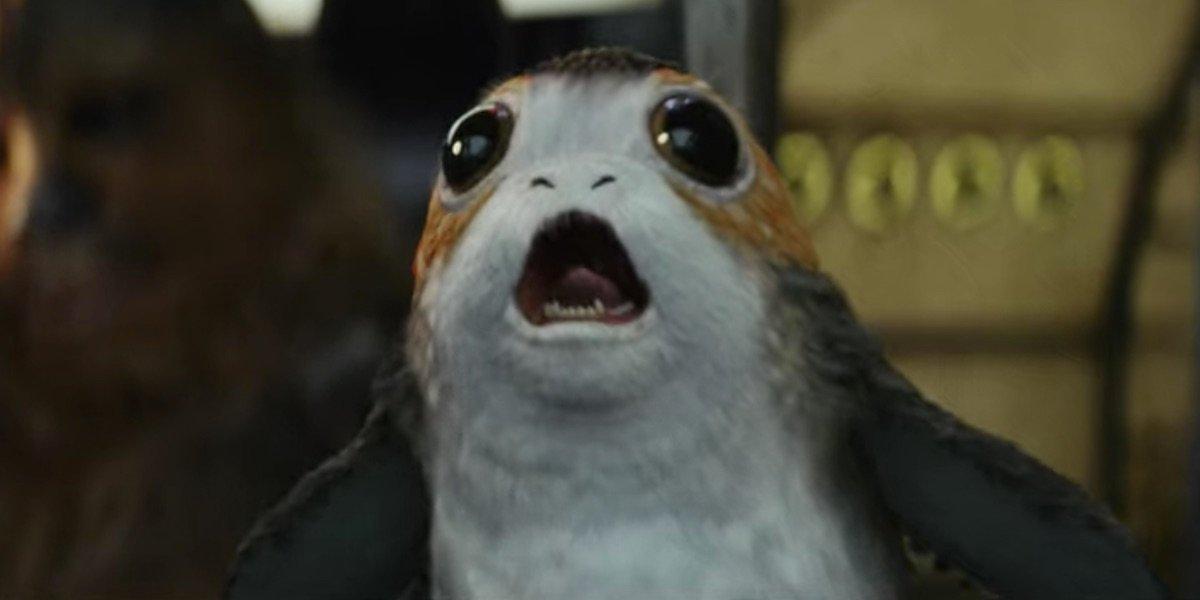 A Porg in The Last Jedi