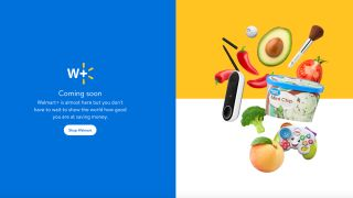 Walmart Plus: Price, launch date and everything else we know so far