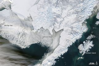 Bering Sea, sea ice, arctic