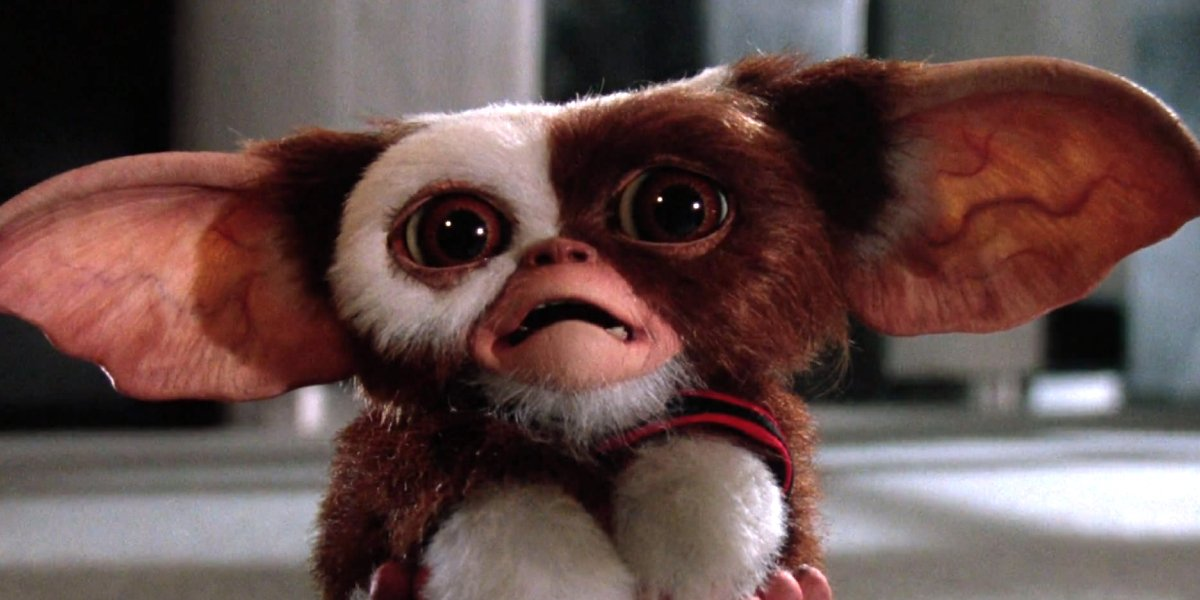 Gizmo from Gremlins 2: The New Batch