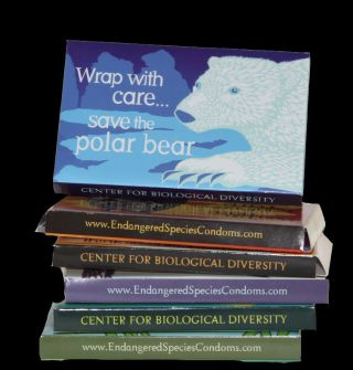 Center for Biological Diversity condoms with polar bear