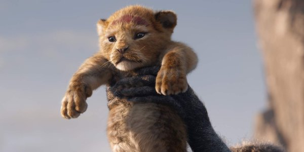The Lion King Baby Simba hoisted in the air