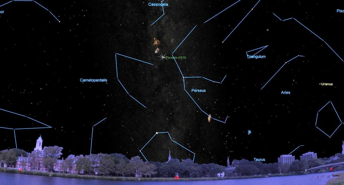Image result for The 2019 Perseid Meteor Shower Peaks Soon: Here's What to Expect