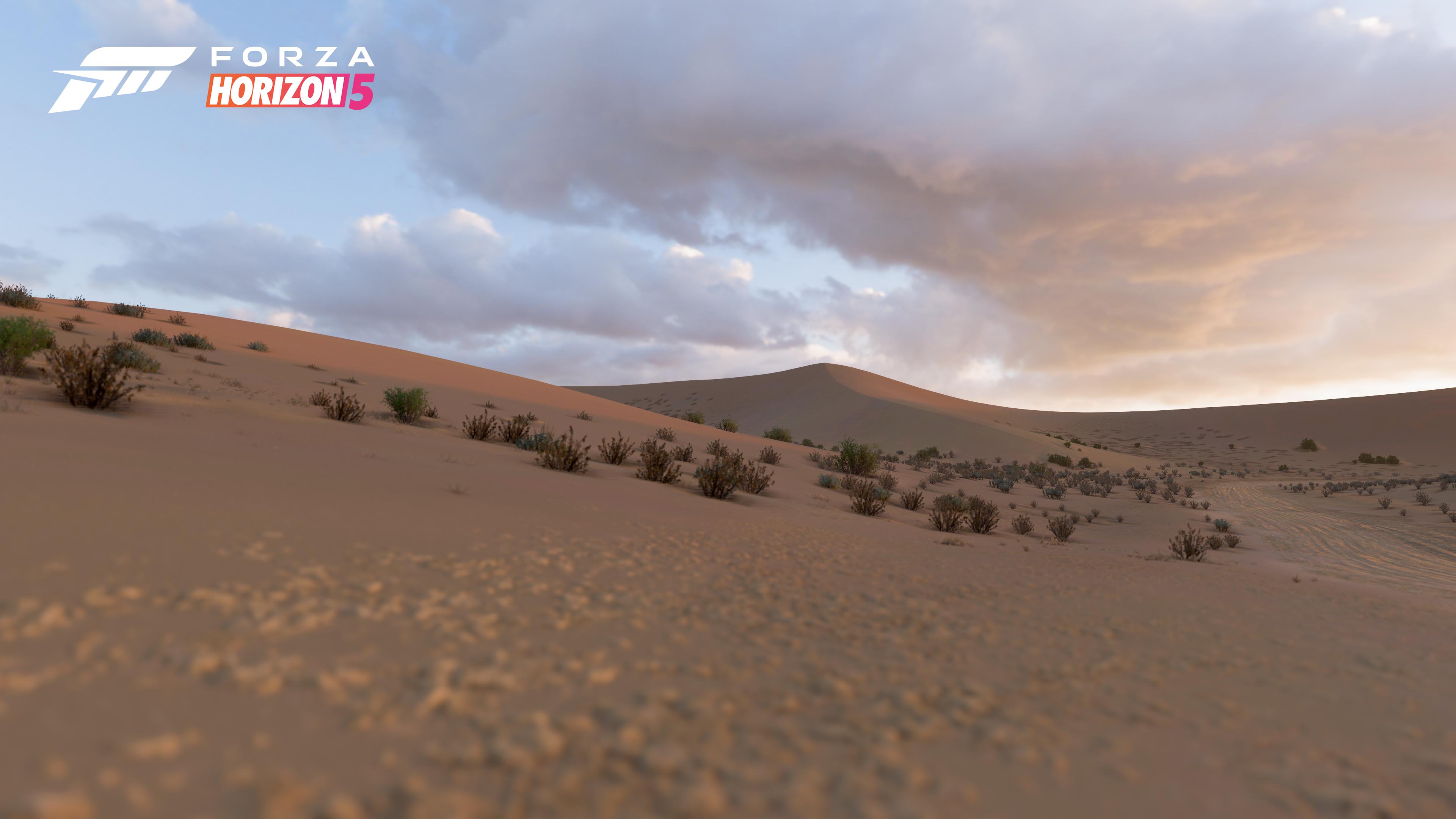 Forza Horizon 5 sand desert