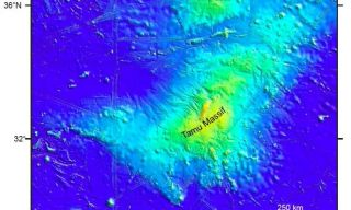 Tamu Massif, located east of Japan, was thought to be the largest volcano on the planet.
