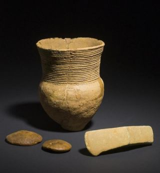 A Corded Ware vessel, an axe and two discs made of amber from an early male grave.