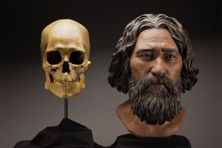 A clay facial reconstruction of Kennewick Man was carefully sculpted around the morphological features of his skull.