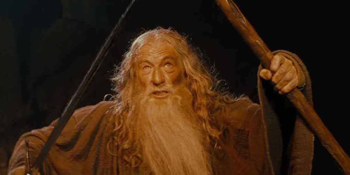 Ian McKellen as Gandalf the Grey in Lord of the Rings