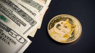 Dogecoin — Doge Day