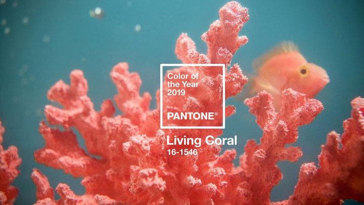 Pantone announces its Color of the Year 2019