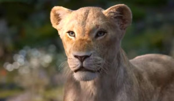 Nala in the new Lion King