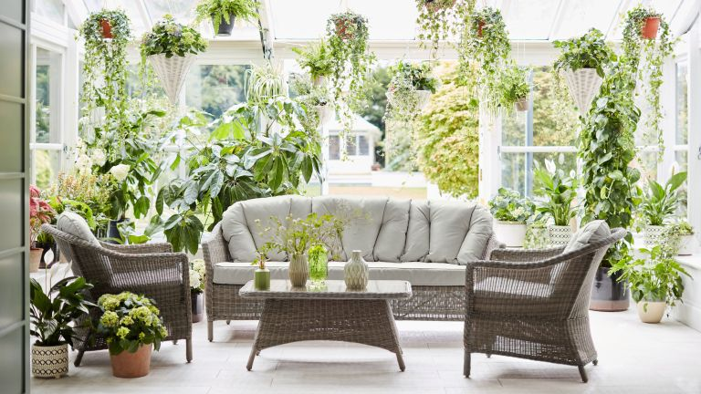 conservatory filled with plants, furniture and coffee table