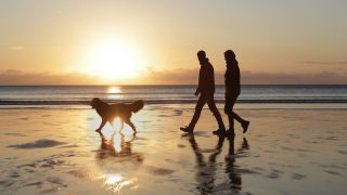 couple hiking on beach with dog