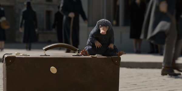 Niffler Harry Potter Fantastic Beasts 2