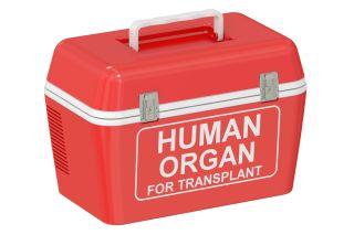 organ transplant cooler