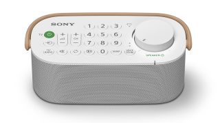 Sony SRS-LSR200 wireless speaker aims to boost TV sound around your home