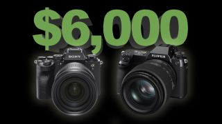 The $6,000 question: Get a 50MP Sony A1 or a 100MP Fujifilm GFX 100S?
