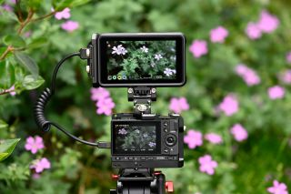 Sigma fp now capable of RAW recording over HDMI with Atomos