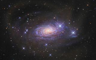 Sparkling Spiral Galaxy