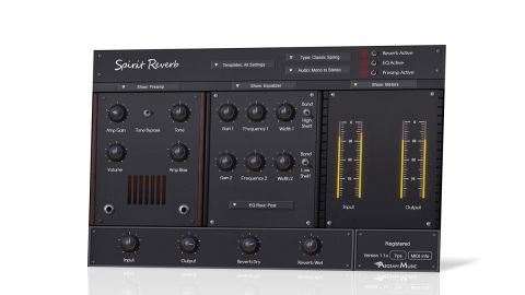 Spirit Reverb is presented in a large and - it has to be said - potentially confusing interface