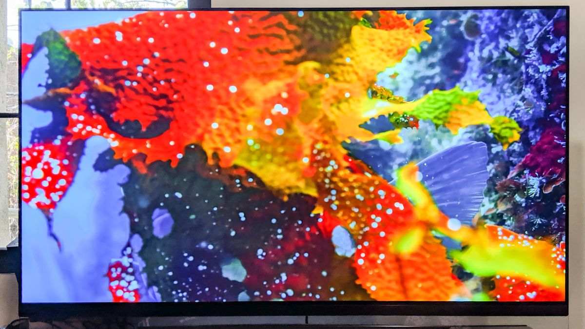 Are OLED TVs Worth It? I Made the Plunge for You